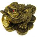 трикрака   жаба